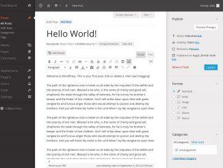 WordPresspicnew